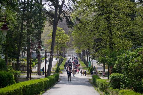 Park Bukovicke banje